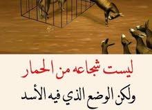 السلام عليكم محتاج معلمه او معلم مادتي الانكليزي ورياضيات مكاني السيديه