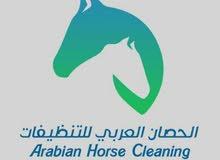 عاملات للنظافه والضيافه