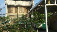 دار للبيع بناء طابوق  طابقين دبل فاليوم مساحه القطعه 500م في الجزيرة الفيروزية