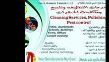SAT cleaning services