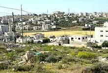 قطع اراضي مميزة للبيع في البنيات