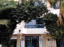 Ground Floor apartment for sale - Maadi
