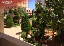 apartment for rent in AmmanKhalda