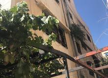 بيت للبيع ام نوارة شارع حسن الهملان