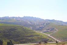 ارض للبيع الدمينة مساحة 950 متر 3 شوارع