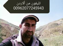 سائق فئه خامسه اطلب عمل مقيم في الأردن