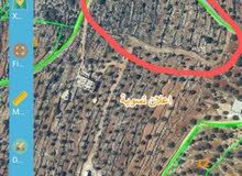 ارض للبيع في مدينة رامالله - مزارع النوباني - منطقة كرم زاهر ( ابو سميط) سابقا.