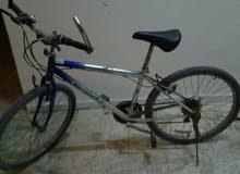 دراجة كورية للبيع