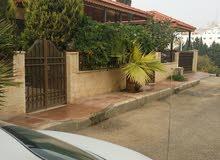 Luxurious  sqm Villa for sale in AmmanShafa Badran