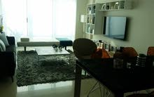 Super Elegant 3 BR FF Apartment With Sea View in Reef Island For Rent