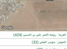 ارض للبيع في محافظة المفرق/ روضة الامير علي بن الحسين