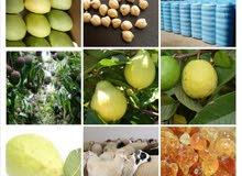 منتجات سودانيه متنوعه