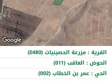 ارض في المفرق للبيع 10 دونم سعر محروق