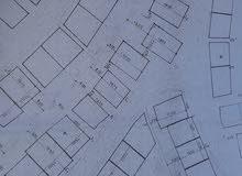 قطعة ارض بعقد ملكية في بلدية الباردة جبل الوحش قسنطينة ذات واجهتين