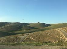 قطعة ارض للبيع زينات الربوع حوض المكمان شفا بدران