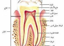 مطلوب طبيب اسنان فترة مسائية
