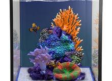 Nuvo fusion 10 aquarium