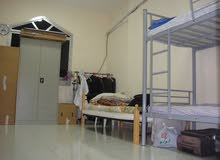 Bed Space available on Airport road- behind Fathima Super Market AED- 750/-