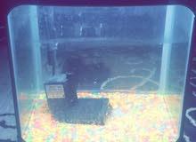 حوض سمك للبيـع بٌ 100 ريال