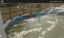 احواض أسماك للبيع مع (نافورات وغطاسات وبوريات)العدد 4 احواض