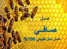 عسل نحل صافي