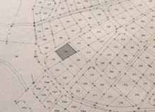 قطعة ارض بمرج الفرس شفا بدران