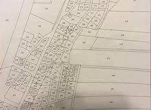 انتهز الفرصة وتملك قطعة ارض بالشونة الشمالية بالاقساط دون دفعه اولى مساحة 300 متر