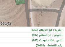 قطعة ارض للبيع في محافظة الزرقاء بيرين ام العظام