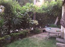 شقة للايجار دور ارضي مدخل خاص وحديقة لجميع الاغراض بالقرب من مترو المعادي