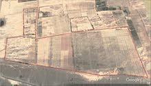 مزرعتين للبيع المنطقة المدينة المنورة