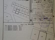 ارض للبيع في السيح الاحمر موقع ممتار على الشارع العام