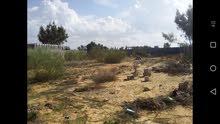 قطعة أرض طرابلس ق