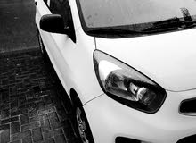 Kia picanto 2017 for rent weekly monthly