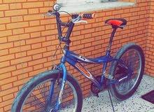 دراجة للبيع نوع bmx 24