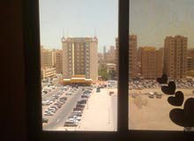 Best price 11 sqm apartment for rent in HawallyHawally