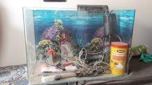 بيع حوض أسماك