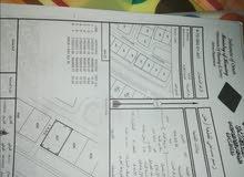 ارض سكنية للاستثمار مخطط 60 بالدقمResidential land for investment