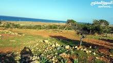 ارض مقابل البحر ساحل كرسة راس الهلال