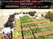 جميع الخضروات للبيع
