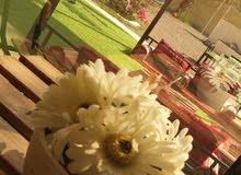Al-Dar park إستراحة الدار  / ولاية شناص - سور البلوش - للإيجار*