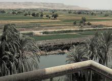 شقة لقطه 65 متر تمليك للبيع بمغاغة محافظة المنيا