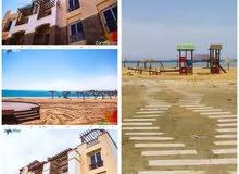 شاليه 3 غرف و 2 حمام للبيع في العين السخنه بالتقسيط