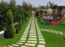 جز عشب حدائق منزلية