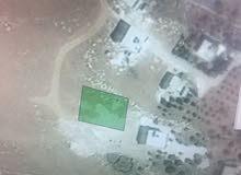 ارض للبيع في شفا بدران / ابو القرام