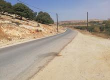للبيع مزرعه مساحتها 7 دنمات و نص في اربد شطنا