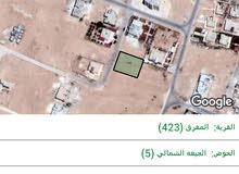 ارض 750م للبيع في المفرق حي الحسين