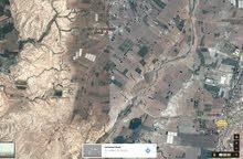 ارض للبيع في دير علا حي الديات