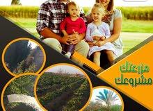 ارض زراعية للبيع علي طريق مصر الفيوم الاقليمي الجديد