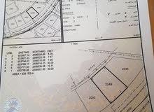 للبيع ارض في العامرات المحج خلف مكتب الوالي