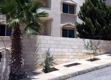 Apartment property for rent Amman - Safut directly from the owner